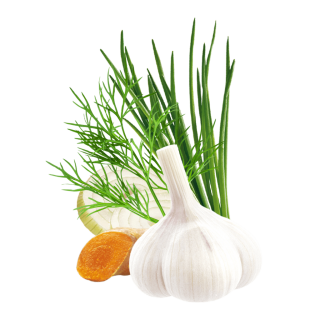 Greek Salad Content Pl