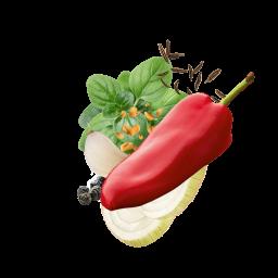Kebab Content Pl