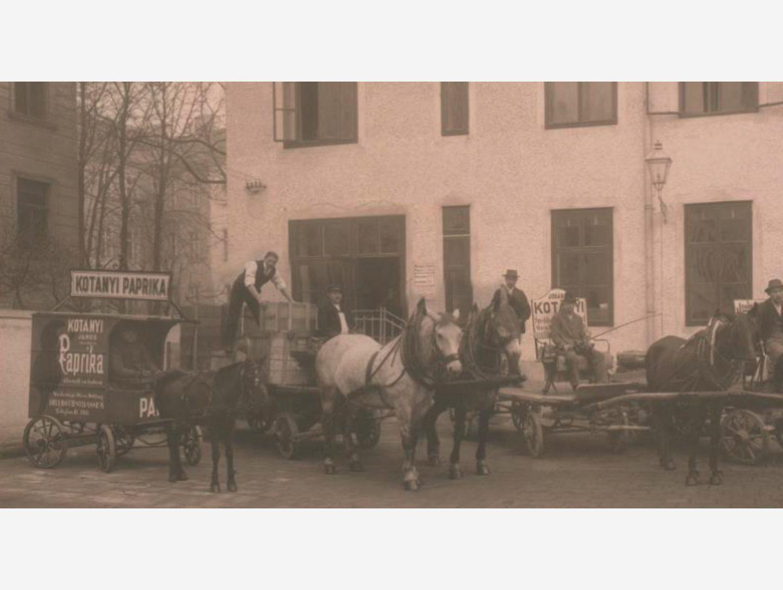 Czarno-biała fotografia: dostawy papryki wozami konnymi w 1881 r.